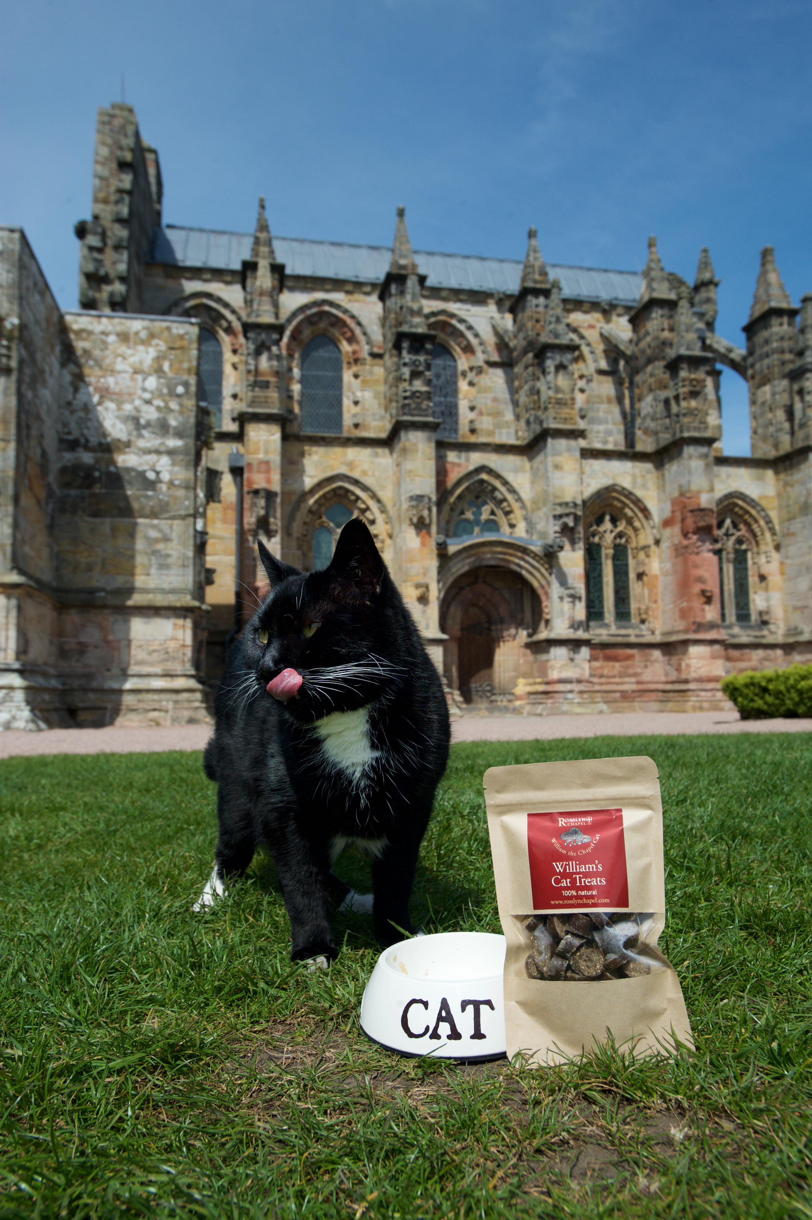 Introducing the purr-fect new gift from Rosslyn Chapel