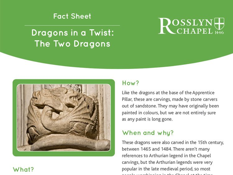 Dragons in a Twist fact sheet